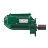 electric-hoist-motor